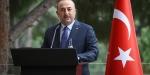 Dışişleri Bakanı Çavuşoğlu: Esed, YPG/PKKyı korumak için girerse bizi durduramazlar