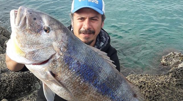 Oltayla 10 kiloluk balık yakaladı
