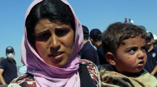 Suriyeli gelin sayısı 5 yılda 17 bini aştı