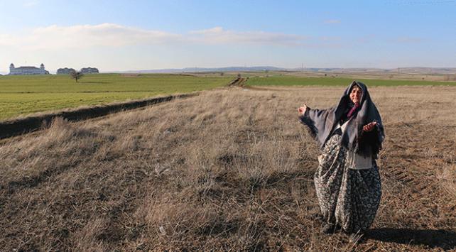 FETÖ, yaşlı kadını dolandırıp, arazilerini elinden aldı