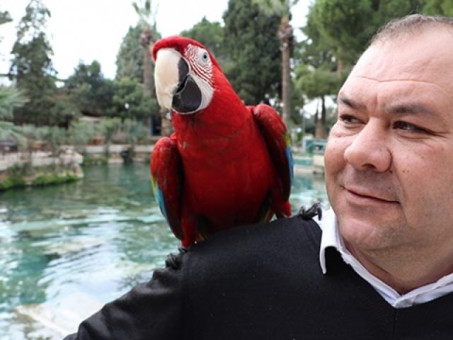 """Papağan """"Sultan"""" ile sahibinin ilginç dostluğu"""