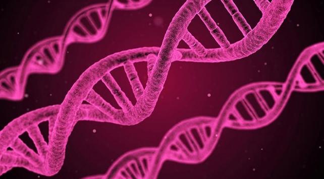 Güney Koreli bilim insanlarından LEDle kanser tedavisi