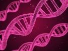 Güney Koreli bilim insanlarından LED'le kanser tedavisi
