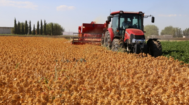 Tarım ve kırsal kalkınmaya 18,5 milyon liralık destek