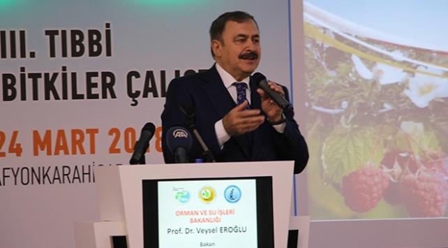Tıbbi ve aromatik bitki ihracat hedefi 5 milyar dolar