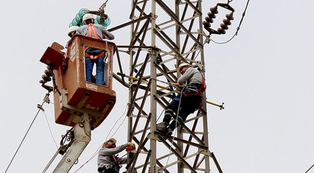 Elektrik hatlarında telef olan kelaynak kuşları için önlem alındı