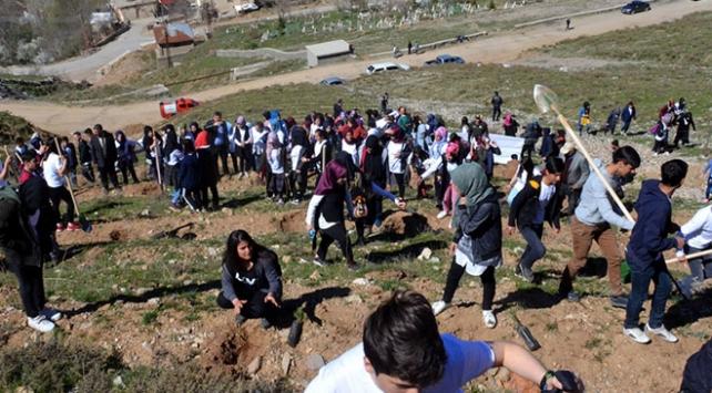 Afrin şehitlerinin adı Dideban Dağında yaşatılacak