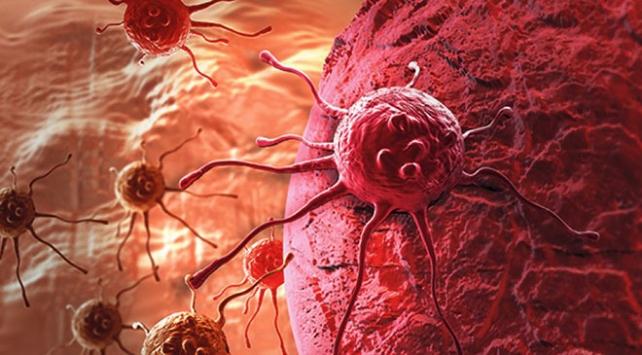 Gelişmiş ülkelerde kanser görülme sıklığı daha yüksek