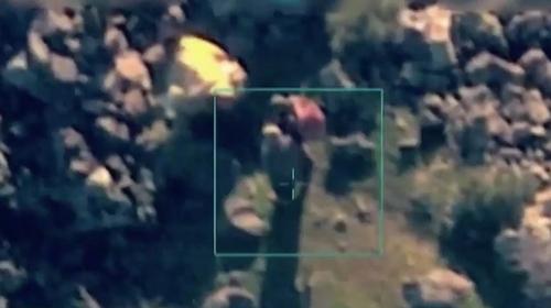 Terör örgütü YPG/PKK hayvanlara işkence etti