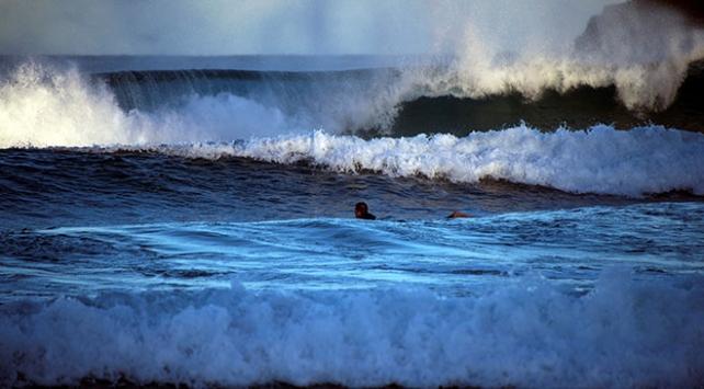 Avustralyada bir sörfçüye köpek balığı saldırdı