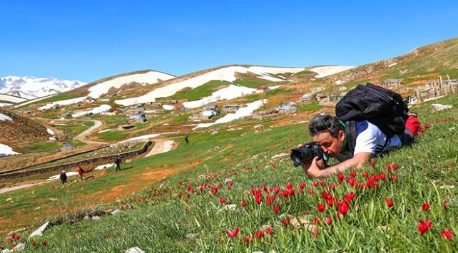 Eğrigöl, doğa fotoğrafçılarına görsel bir şölen sunuyor