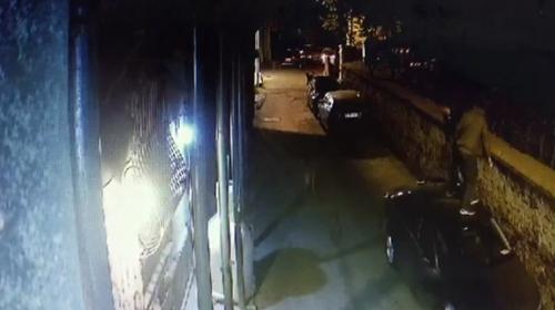 Sokak köpeklerinden kaçtılar, araçların üzerine çıktılar