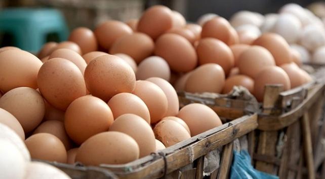 Yumurta üreticileri kod uygulamasından memnun