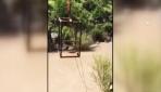 Terör örgütünün teleferiği imha edildi