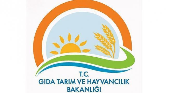 Gıda Bakanlığından antep fıstığı ithalatı iddialarına yalanlama