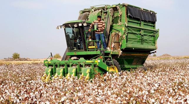 Köylüler birlikte üretip daha çok kazanacak