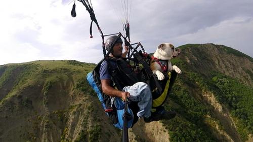 Köpeğiyle yamaç paraşütü yaptı