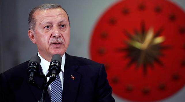 Cumhurbaşkanı Erdoğan: Kendi milli paramızı dövizle değiştirmeyin
