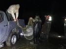 Van'da kaçak avlanan 11 ton inci kefali ele geçirildi