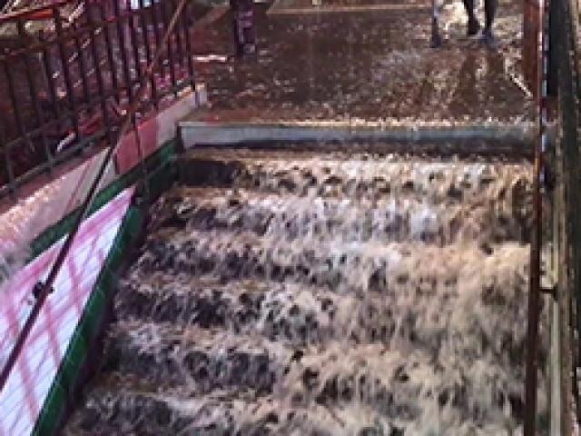 Eylemlerle sarsılan Parisi bu kez de yağmur ve dolu vurdu