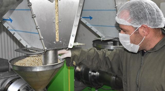 Yüksekova'dan ABD'ye aspir yağı ihracatı