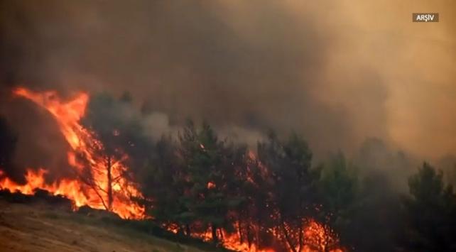 Yunanistanın Eğriboz Adasında orman yangını