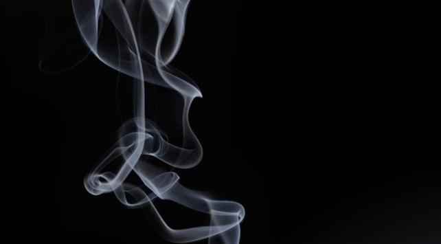Her yıl yaklaşık 6 trilyon sigara tüketiliyor