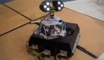 Hamam böceği, robot için ilham kaynağı oldu