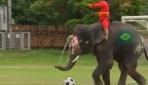 Filler insanlarla yaptığı maçı 2-1 kazandı