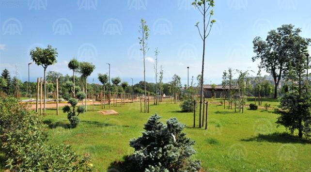 Trabzonun 103 dönümlük botanik bahçesi tamamlanıyor
