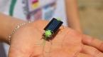 """Alternatif enerjiyi """"robot cırcır böceği"""" ile anlatıyorlar"""