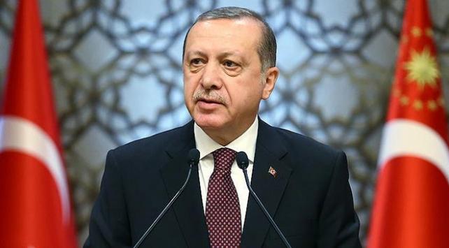 Cumhurbaşkanı Erdoğan, yavru köpeğin ölümünün araştırılması için talimat verdi