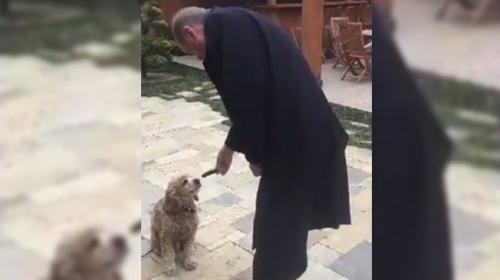 Cumhurbaşkanı Erdoğan küçük köpeği eliyle besledi