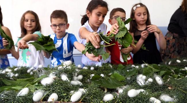 İpek böcekleri yetiştiren çocuklar tatilde de sorumluluklarını yerine getiriyor