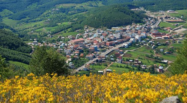 Ordu Argan Yaylası turizme kazandırılıyor