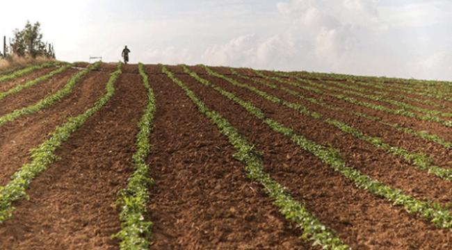 Hazineye ait tarım arazilerinin kiralanmasıyla ilgili yeni düzenleme