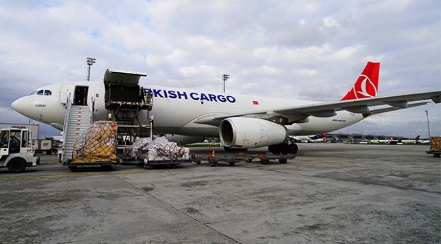 Turkish Cargo Güney Afrikadan İrana 3 zürafa taşıdı