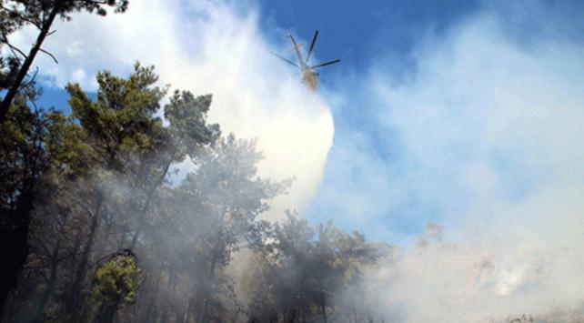 Marmaris ve Dalamanda orman yangınları