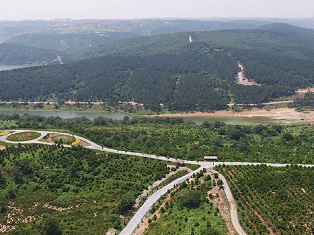 Avrupa Yakası Uluslararası Kent Ormanı için geri sayım başladı