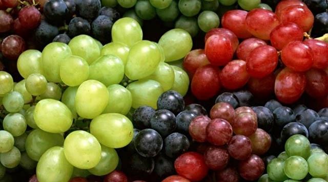 Türkiyenin yaş üzüm ihracatı arttı
