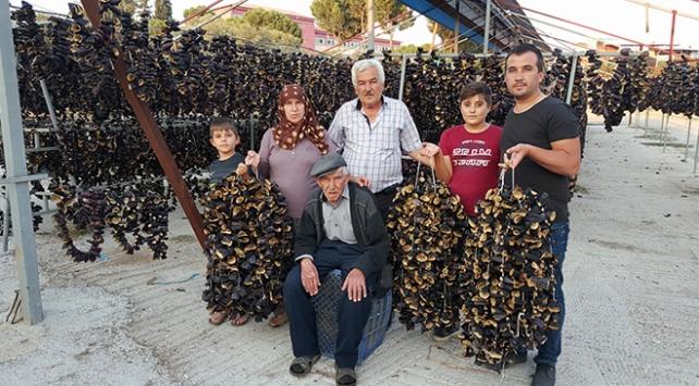 Karaefe ailesi doğal kurutma patlıcanlarını tüm dünyaya satıyor