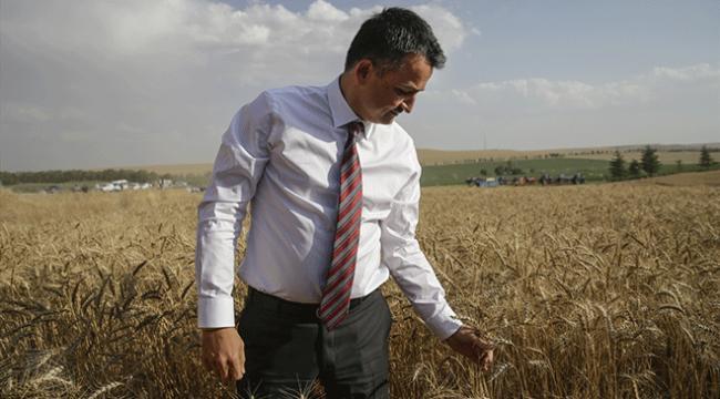 Tarım ve Orman Bakanı Bekir Pakdemirli: Tarımı daha iyi yerlere götüreceğiz