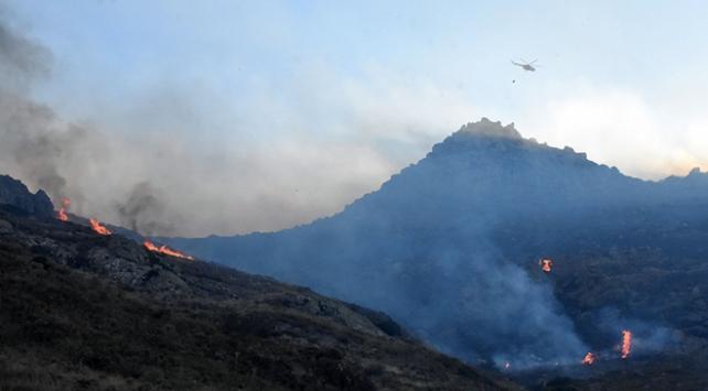 Bodrumda makilik alanda çıkan yangın söndürüldü