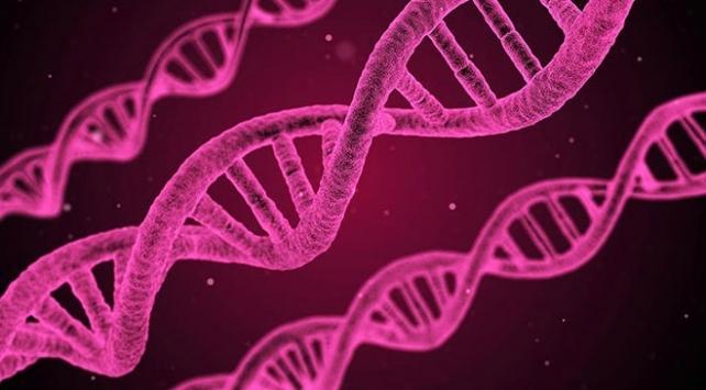 Türk bilim insanından kanser tedavisi için önemli çalışma
