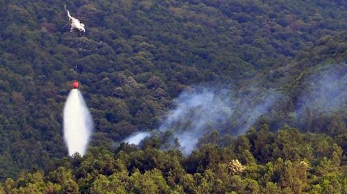 Uludağ'ın eteklerinde orman yangını