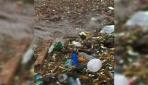 Meksika Cabo San Lucas sahili plastik atıkla doldu