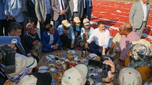 Bakan Pakdemirli tarlada tarım işçileriyle kahvaltı yaptı