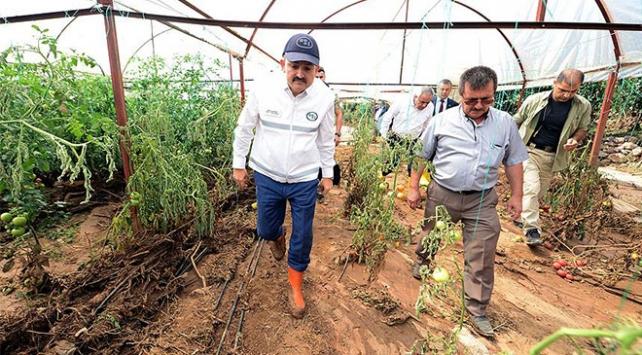 Tarım ve Orman Bakanı Pakdemirli: Devlet ne gerekiyorsa yapacak