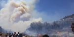 Bursada orman yangını