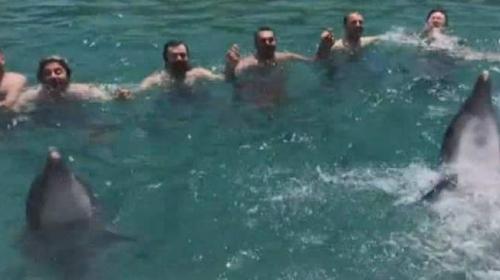 Yunuslar vatandaşlarla horon oynadı